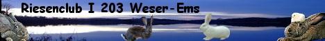 """Auf dieser Website erfahrt ihr viele interessante Informationen über die größte Kaninchenrasse """"Deutscher Riese"""" ."""